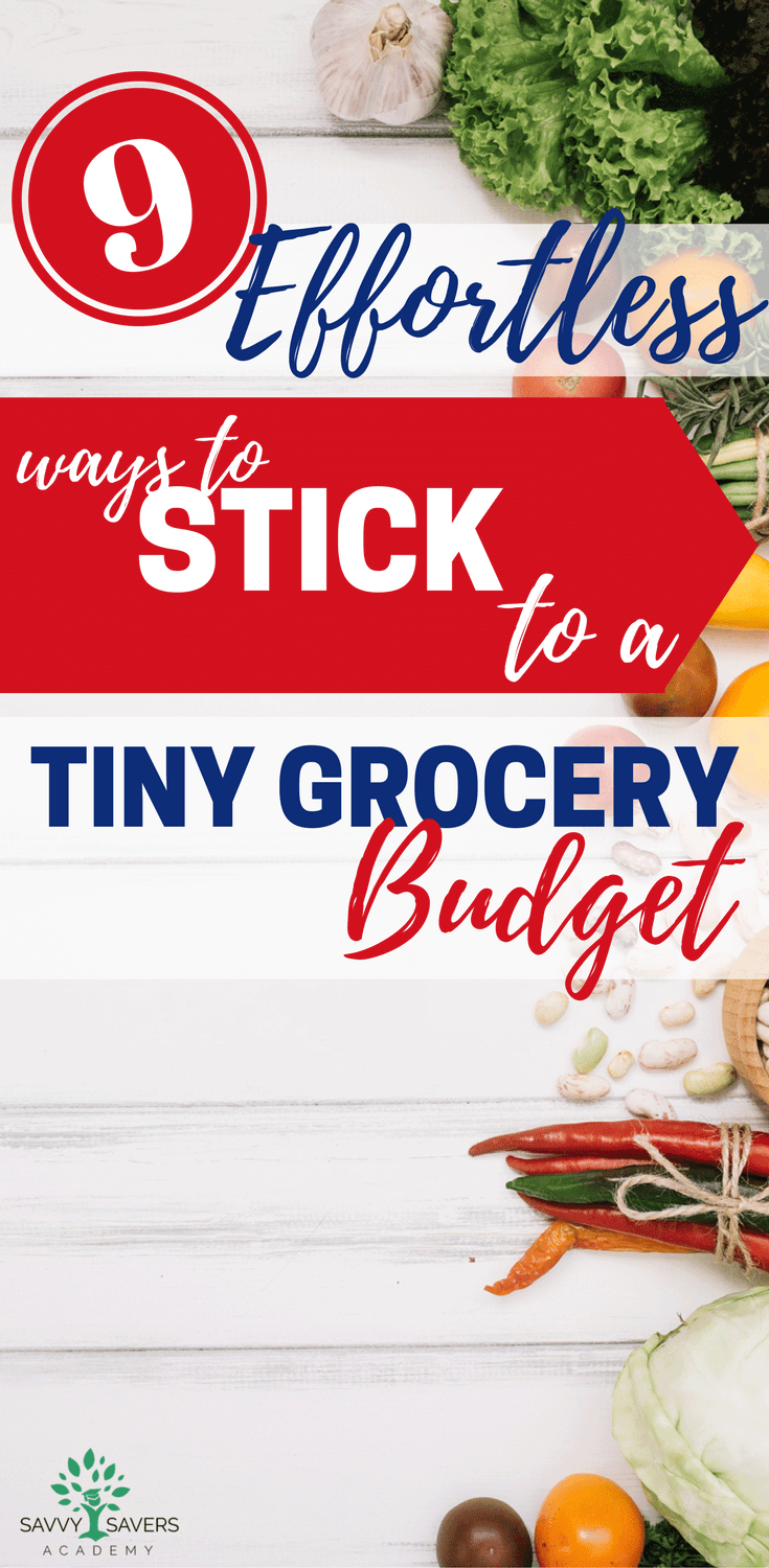 It can be hard to save money on groceries, especially when you have a tight budget. Creating a shopping list and meal plan are among things that will help stick to your budget. Here are some more ideas to help you save on your grocery bill.